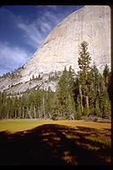 Meadow at the base of Half Dome. Yosemite, California